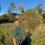 Floodplain meadow