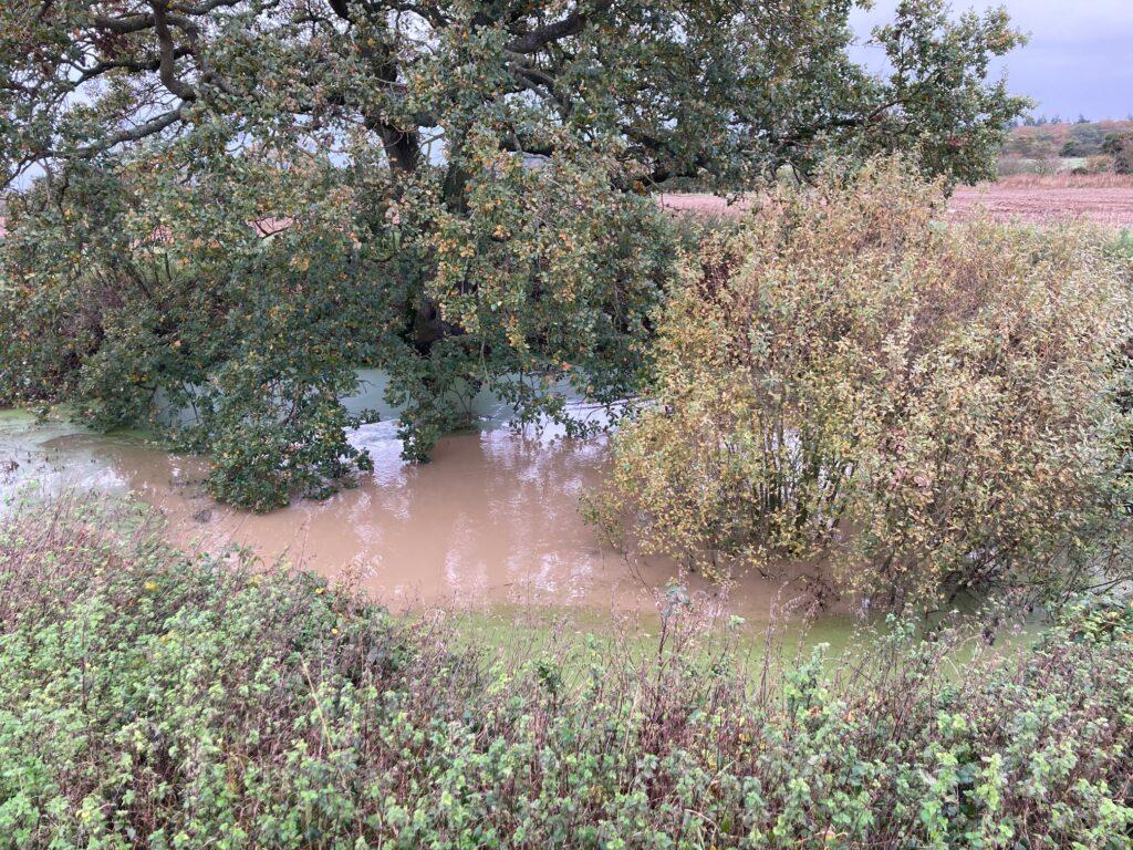 Muddy surface runoff pond